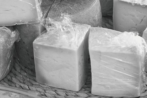 Qué tipos de queso existen en el mundo